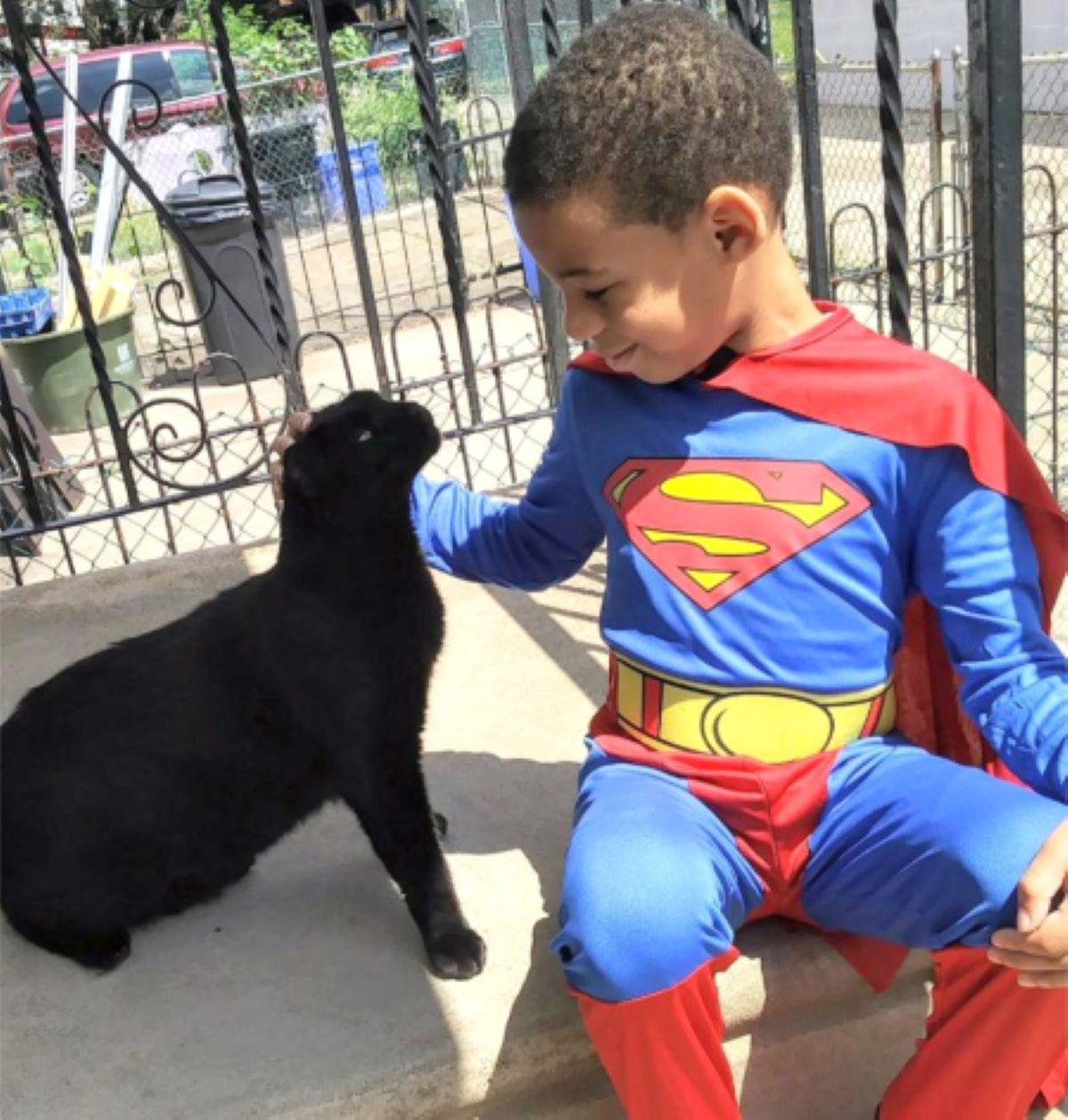 gatto-nero-con-bambino-vestito-da-superman