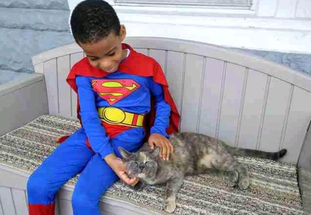 gatti-e-bambino-su-panchina