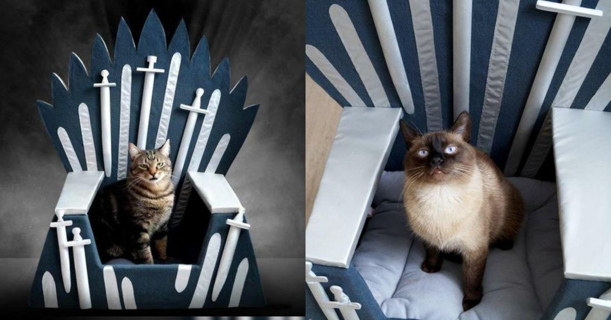 gatti-su-trono