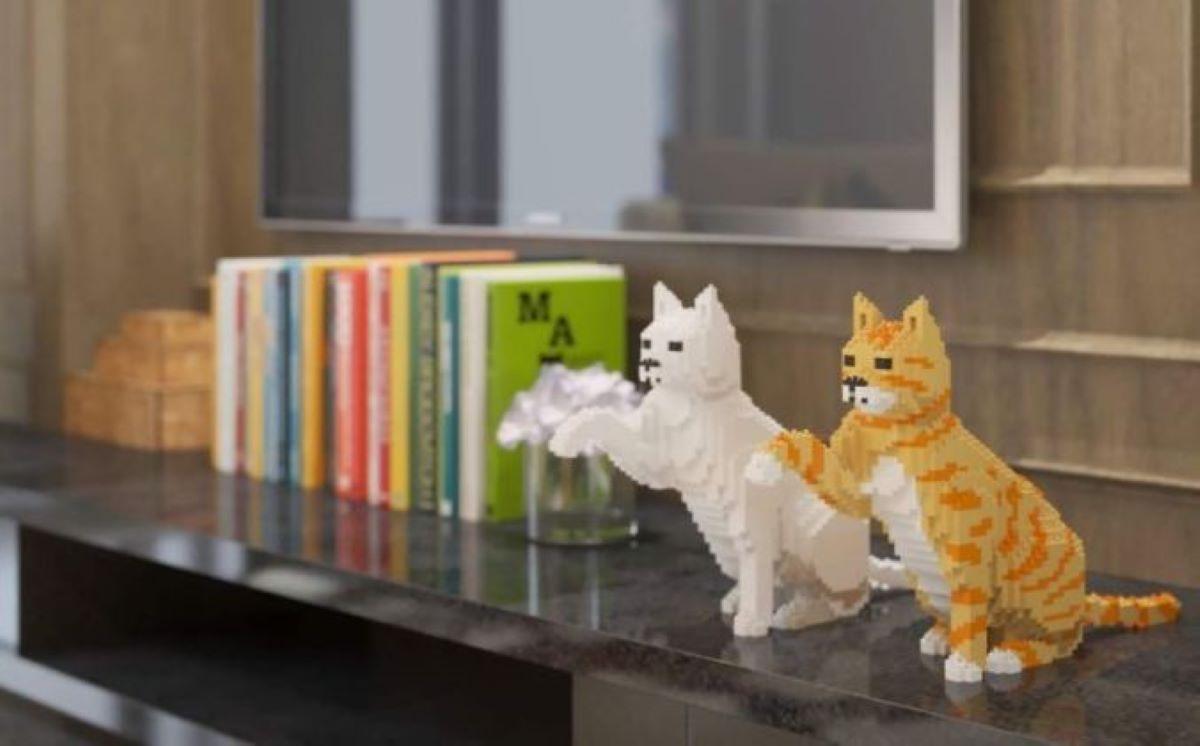 gatti-realizzati-con-costruzioni-vicino-a-libri