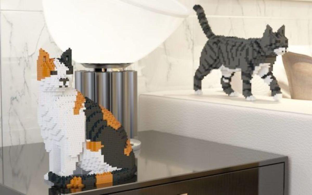 gatti-con-i-mattoncini-vicino-a-lampada