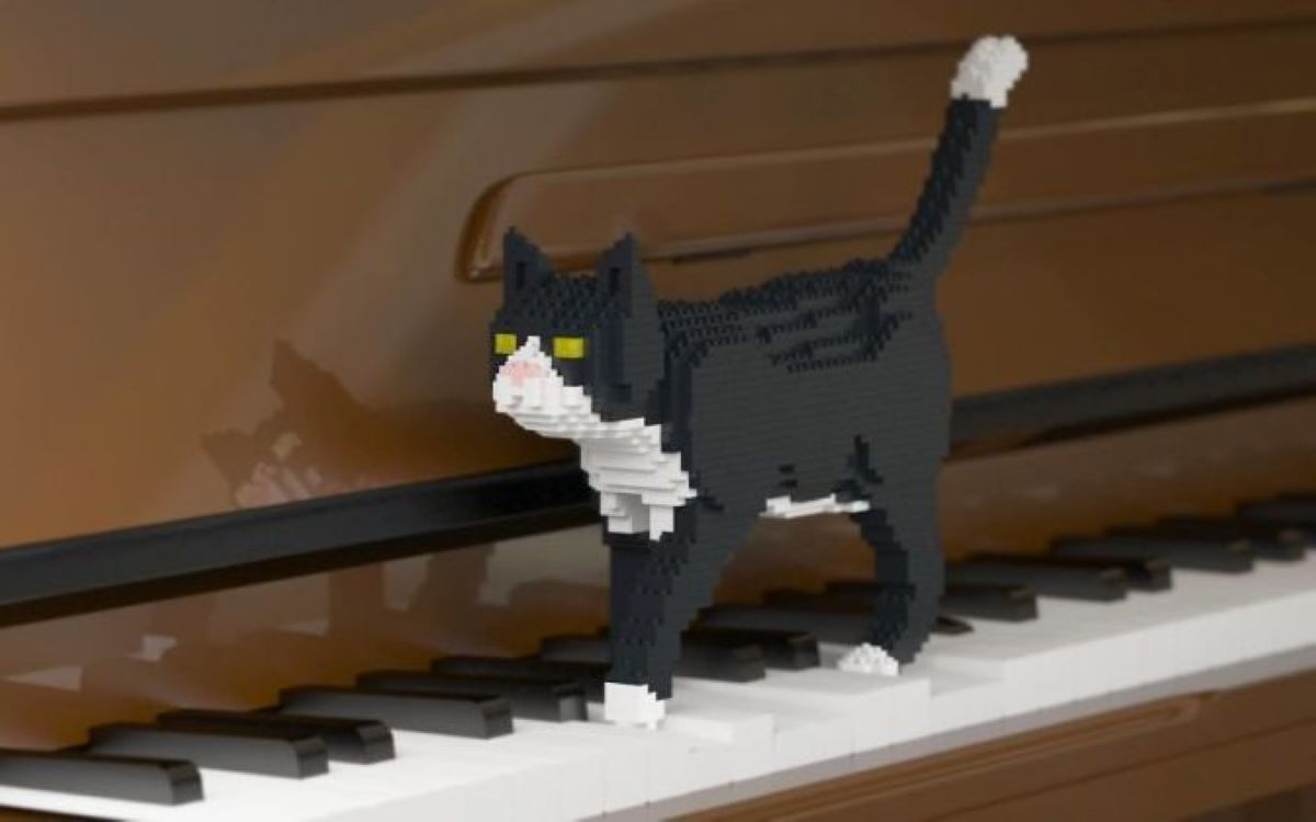 gatto-simile-a-lego-su-pianoforte