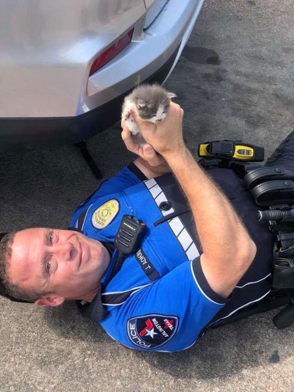 gattino-con-poliziotto