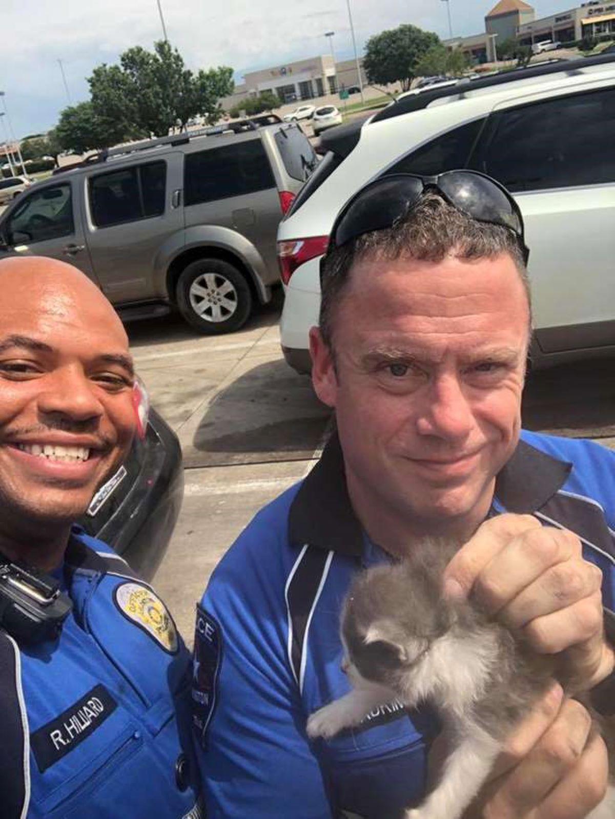 gattino-con-due-agenti