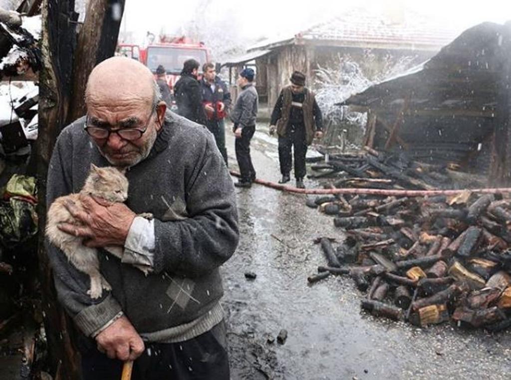 anziano salva gattino