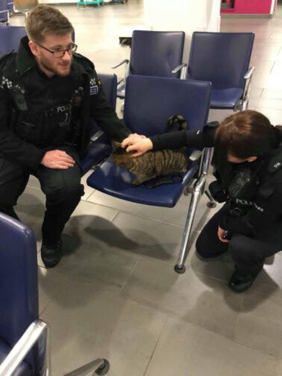 gatto-con-due-poliziotti