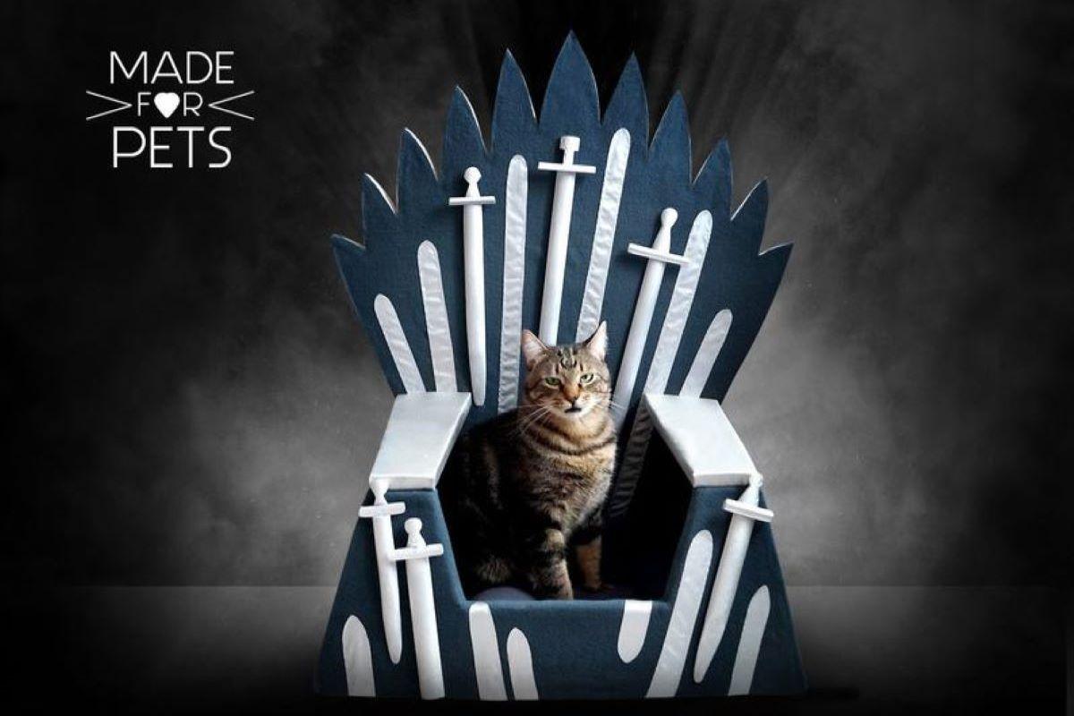gatto-su-trono-di-spade