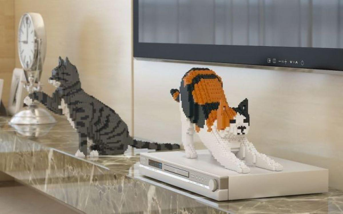gatti-in-mattoncini-su-dvd