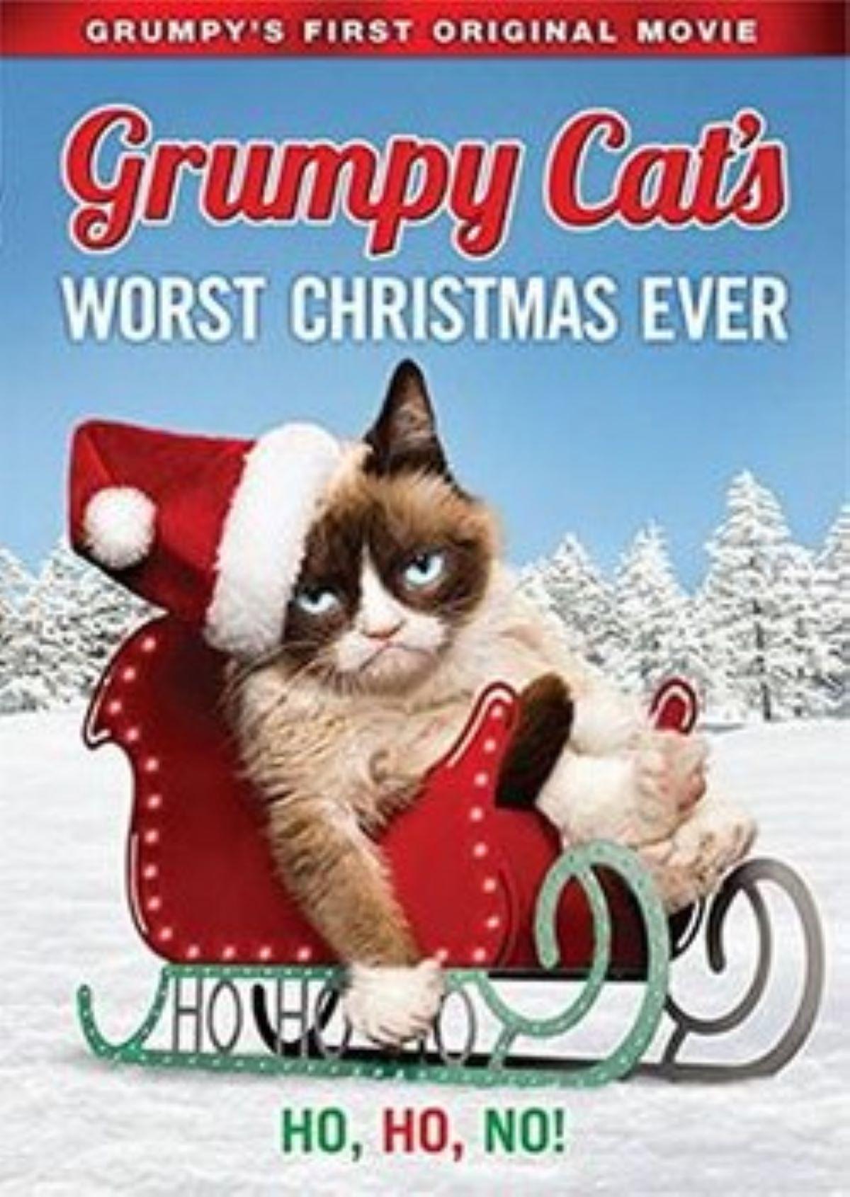 copertina-dvd-con-gatto-imbronciato