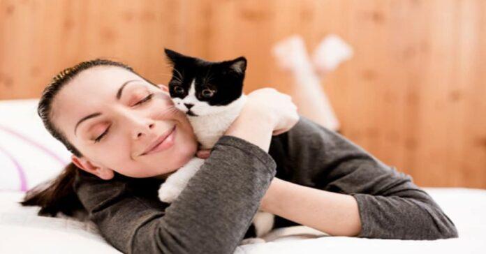 i-gatti-riducono-lo-stress-e-alleviano-la-malinconia