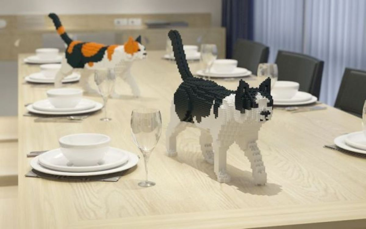 gatti-in-lego-su-tavolo