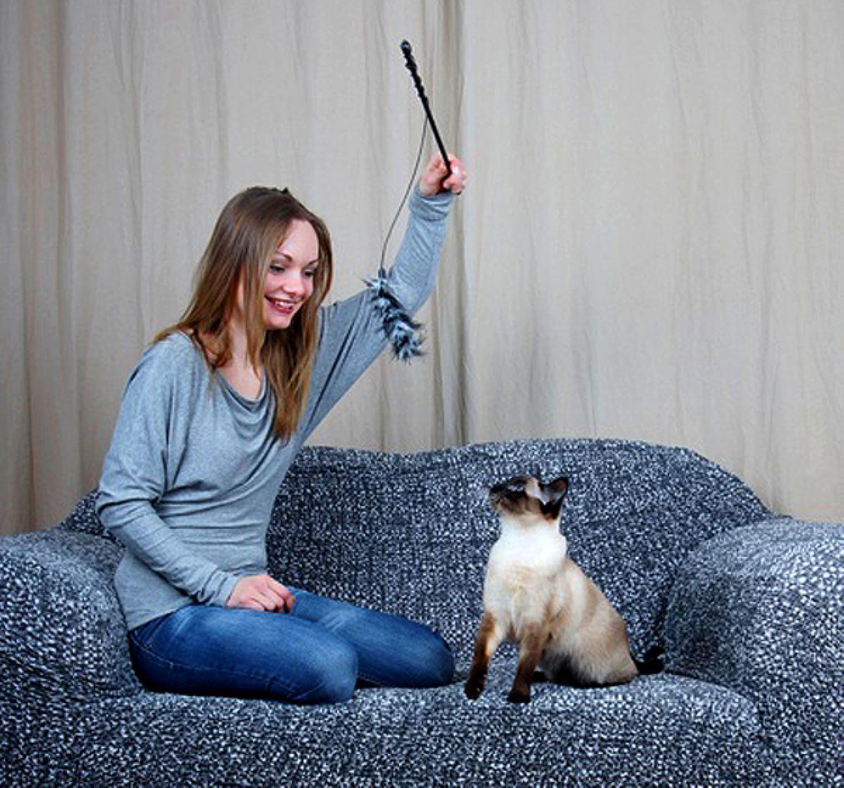 gatto-sul-divano-che-gioca
