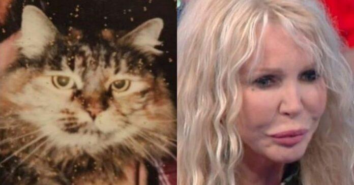 gatto-e-donna-bionda