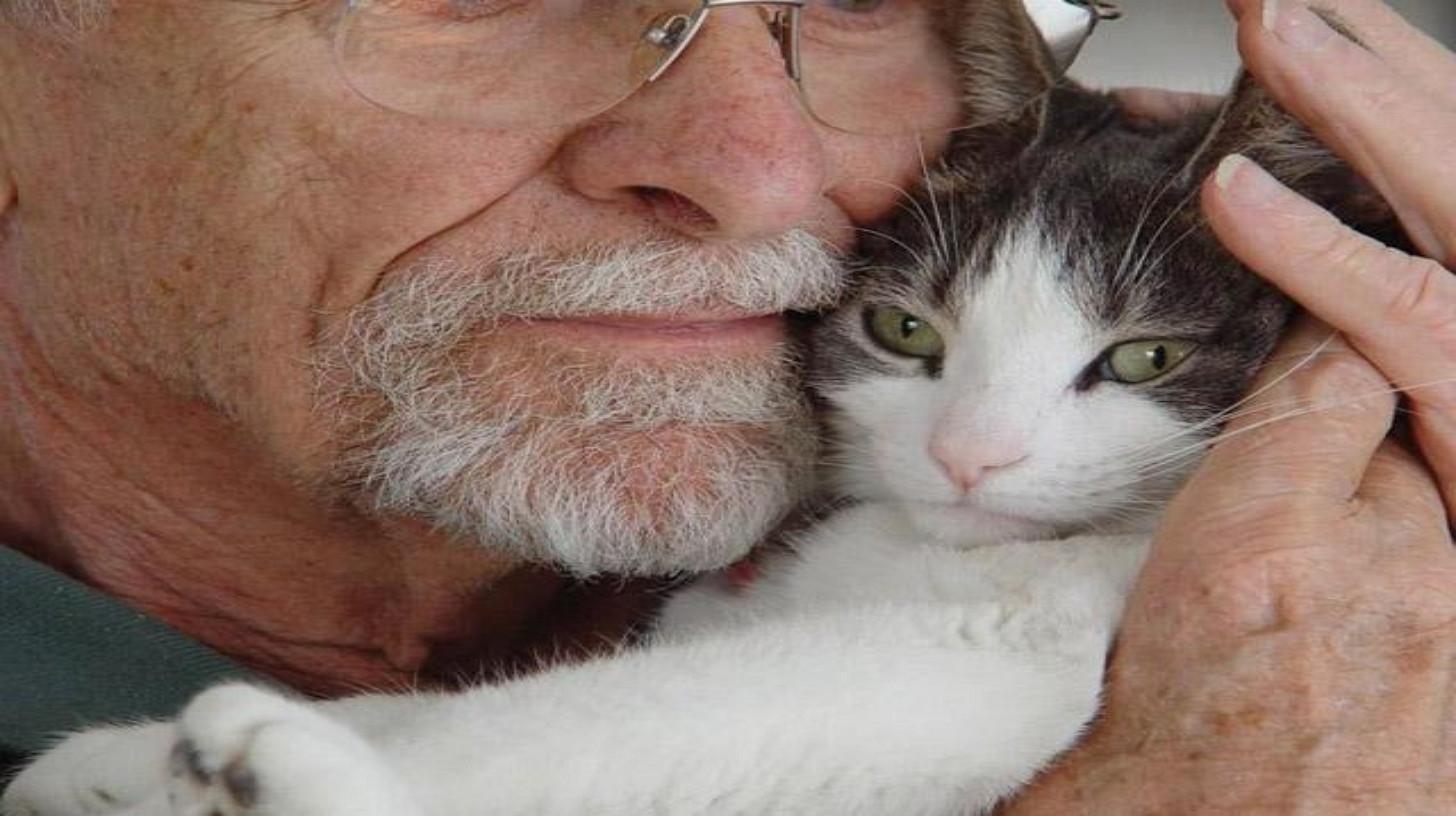 Gatto con un anziano