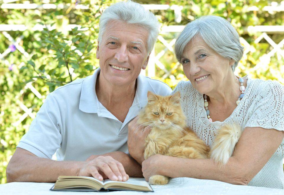 Gatto insieme a due anziani