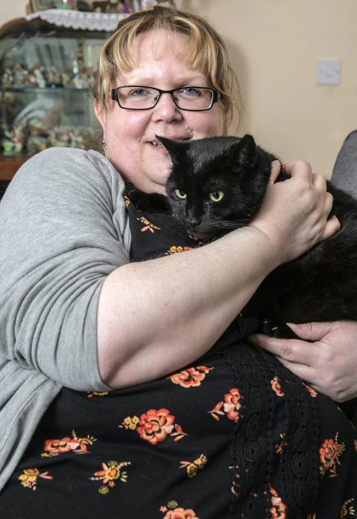 Gatto nero con occhi gialli