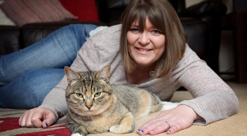 Gatto tigrato con la padrona