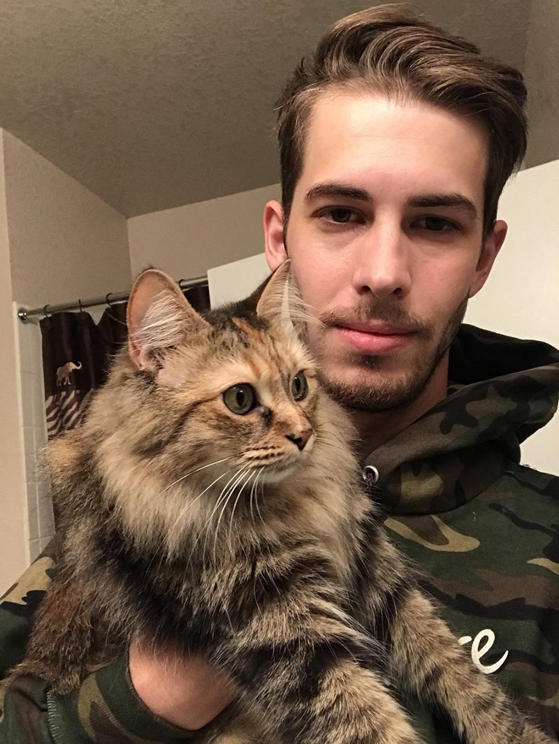 Gatto tigrato con un ragazzo
