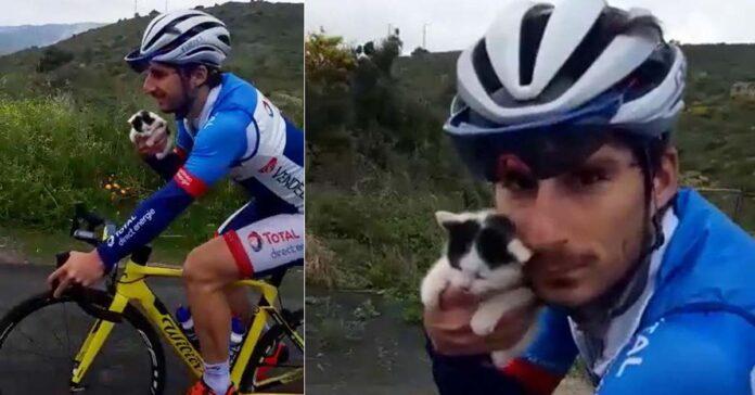 Un ciclista con un gattino