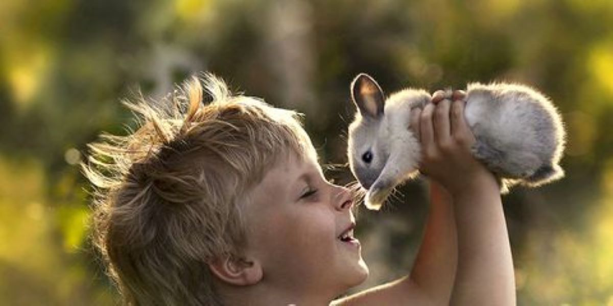 coniglietto-con-bambino