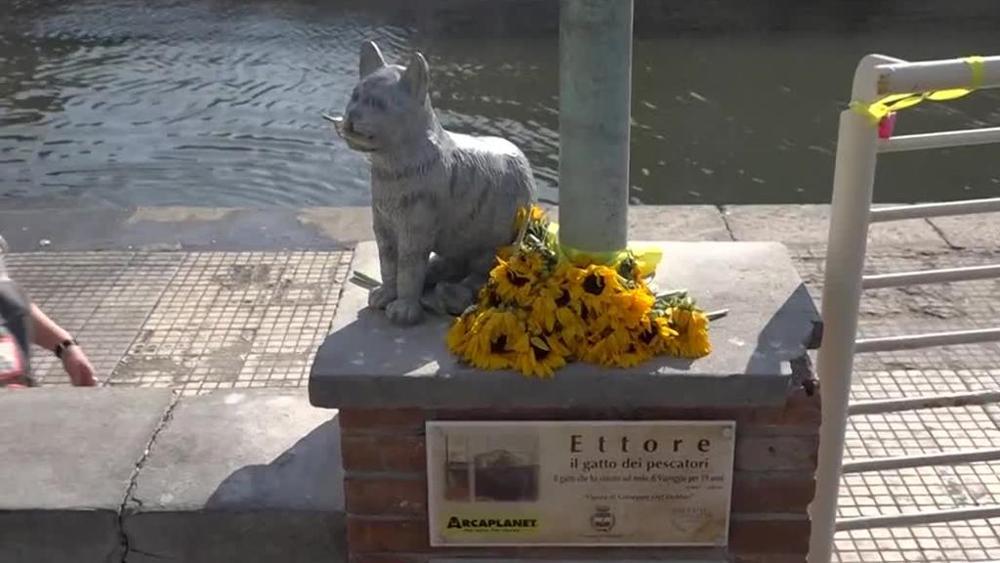 statua-di-gatto-con-fiori