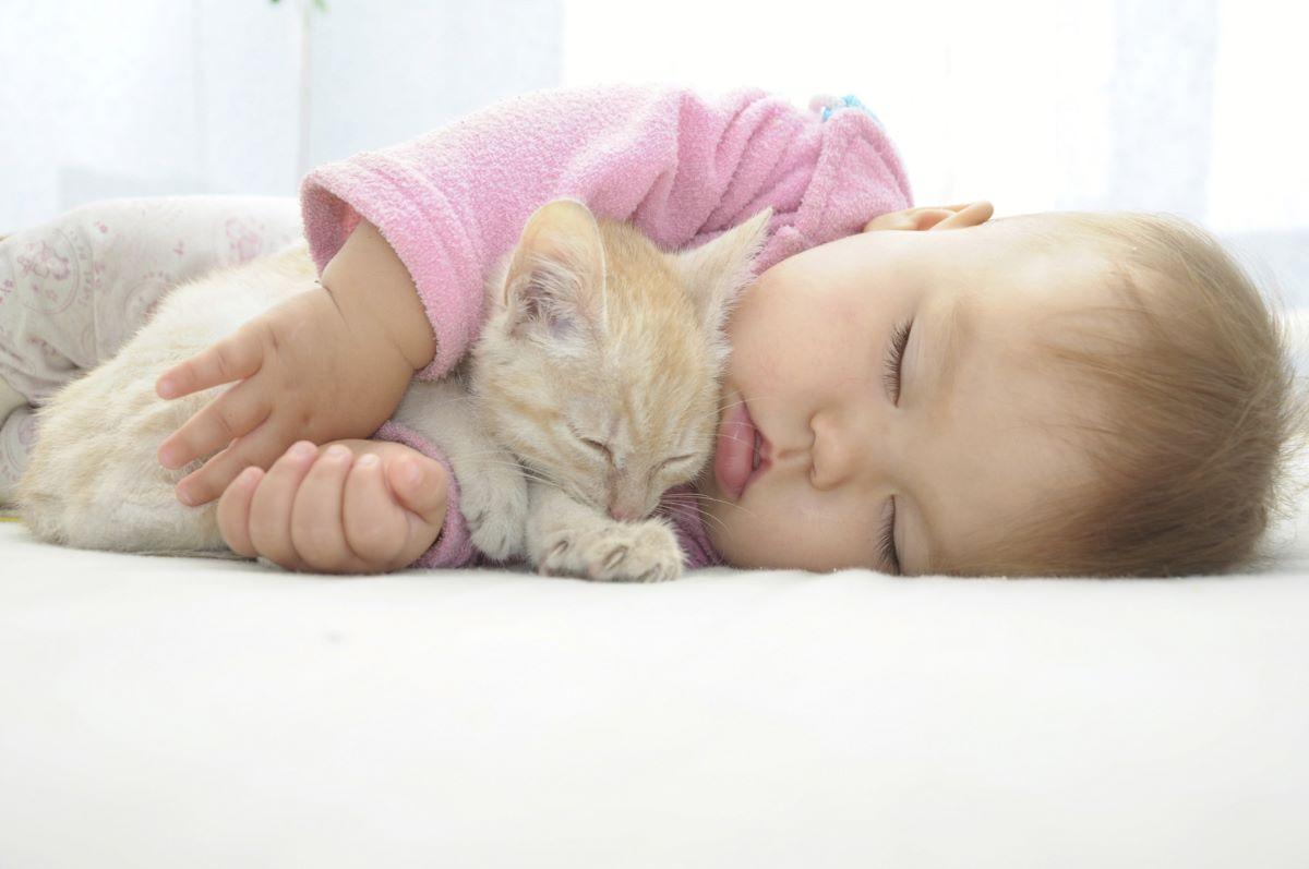 bambina-piccola-con-gattino