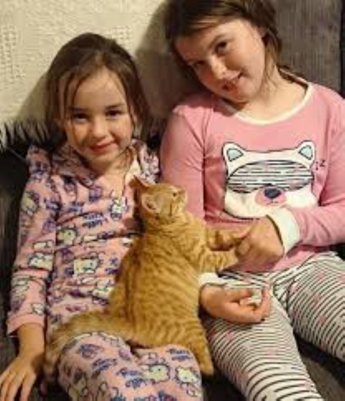 gatto-con-bambine