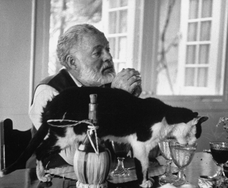 bianco-gatto-e-nero-in-fotografia-antica