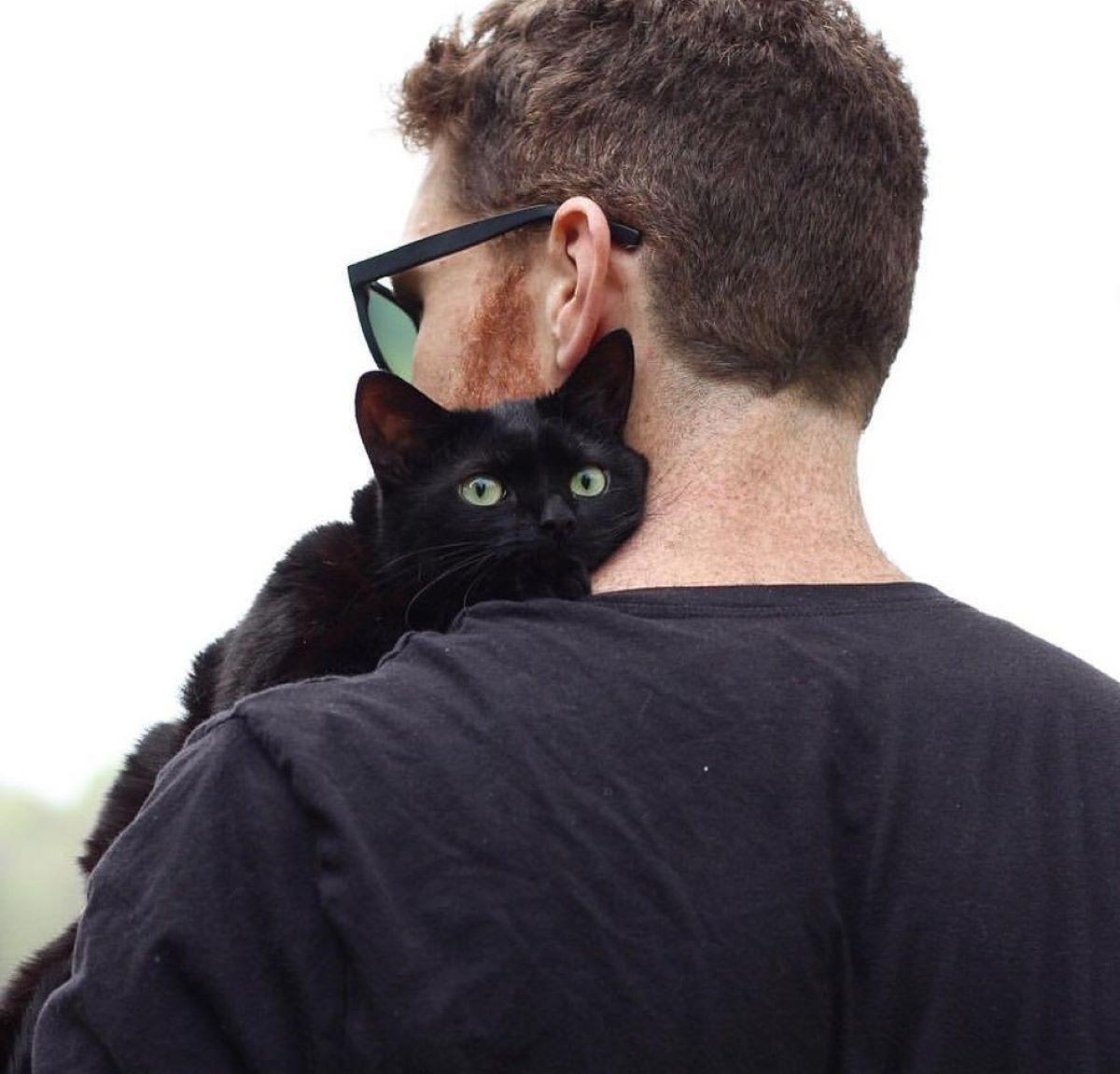 gatto-in-braccio-a-uomo