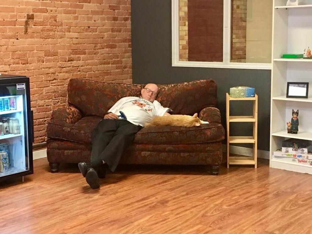 gatto-e-uomo-su-divano