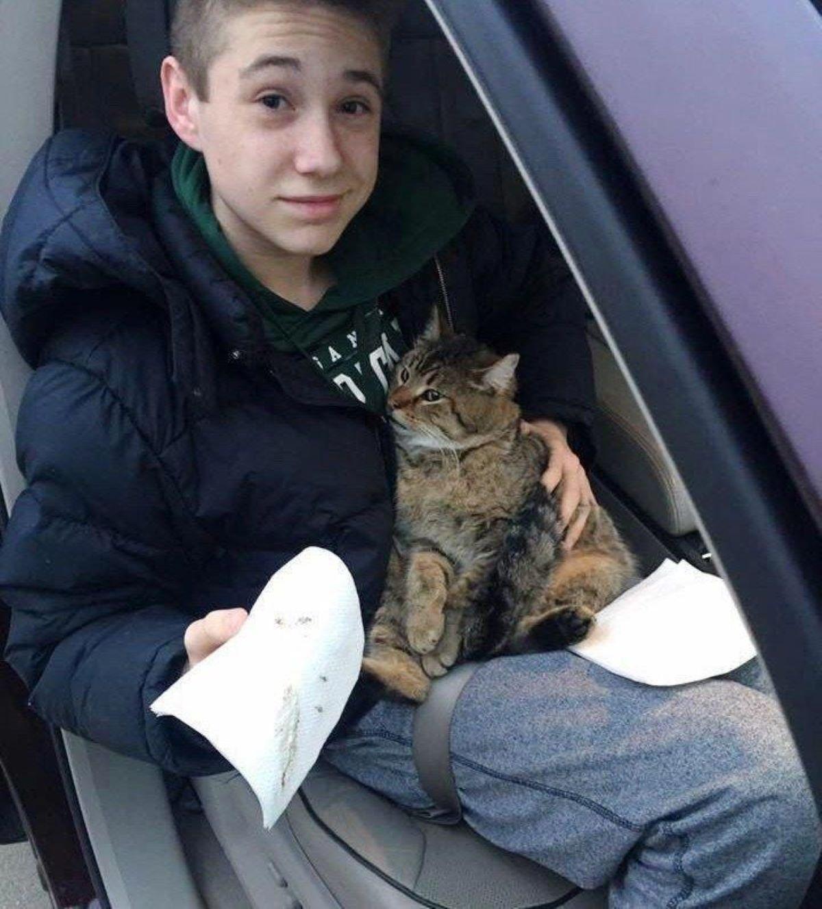 gatto-seduto-su-ragazzo