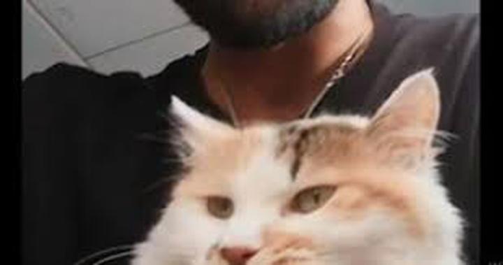 Gatto Mimì