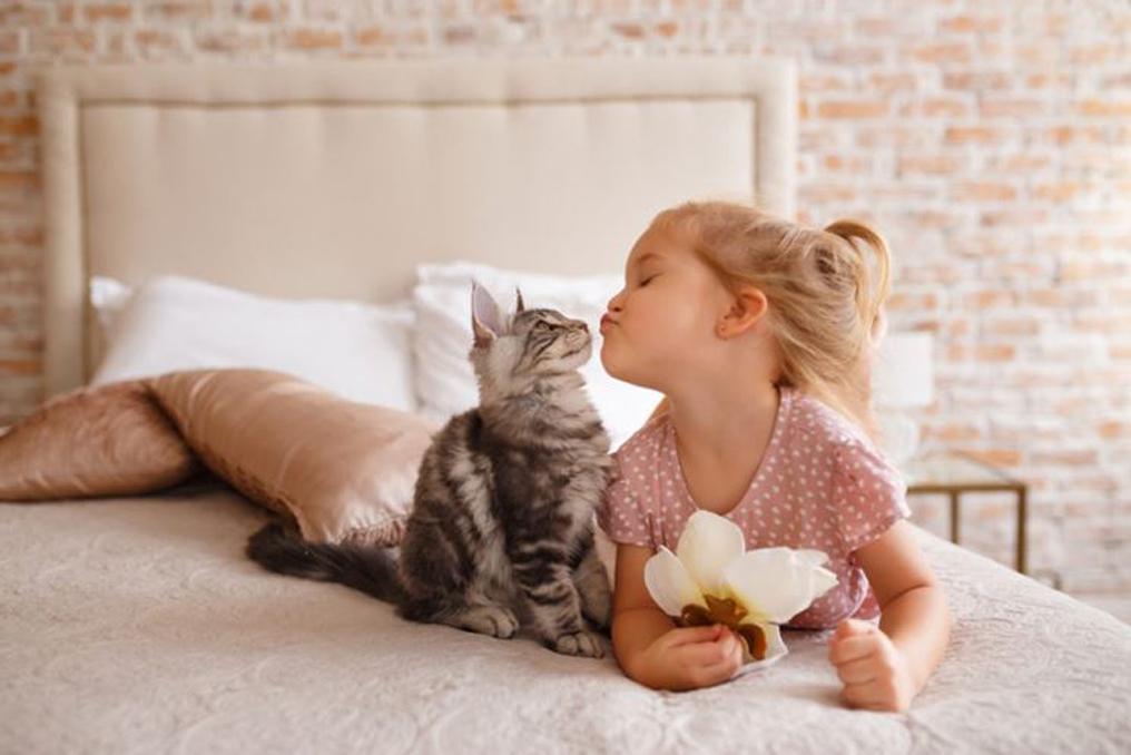 Gatto baciato da una bambina