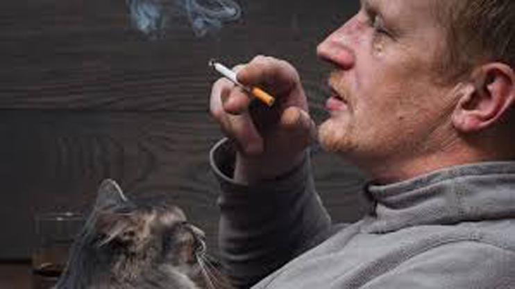 Gatto insieme ad un uomo che fuma