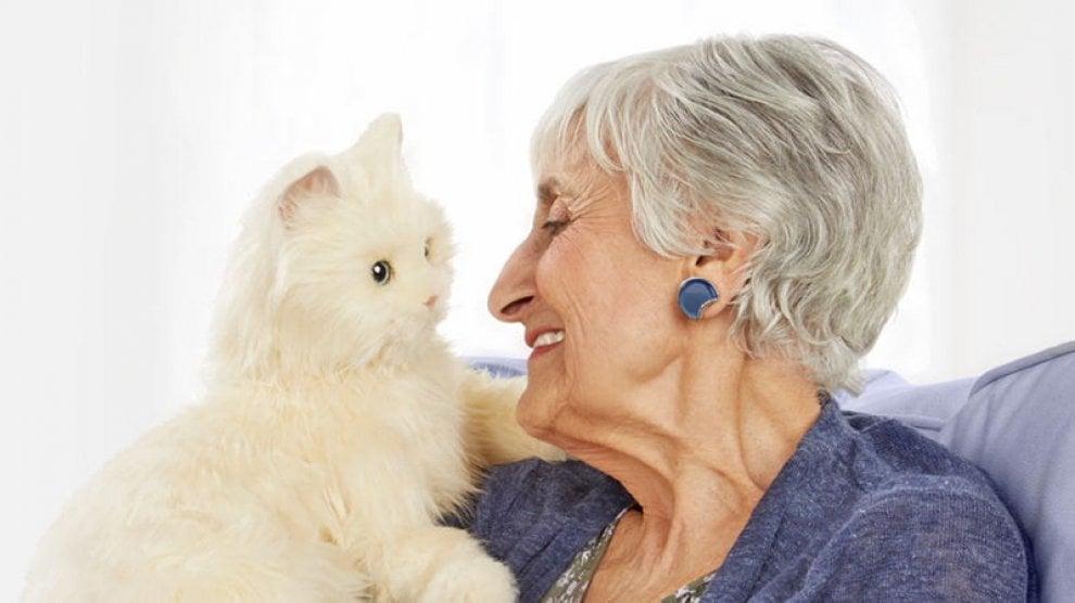 Gatto insieme ad una donna anziana