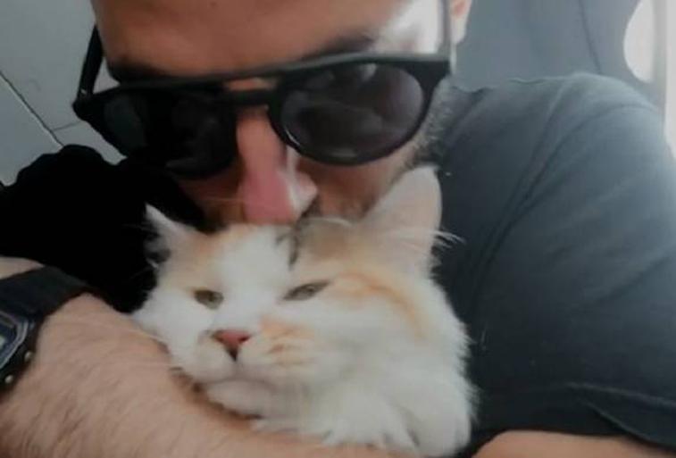Gatto salvato da Davide Acito