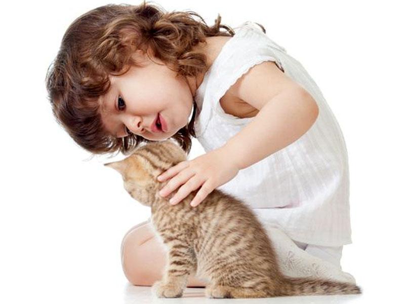 Un gattino con una bambina