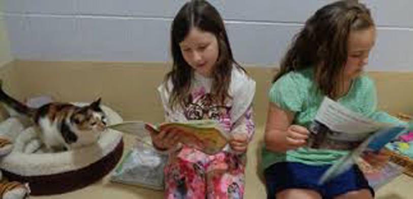 Bambine che leggono ad un gatto