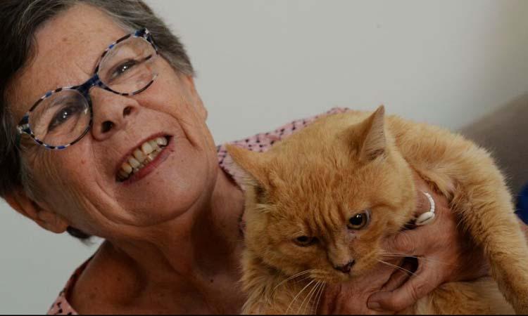 Gatto Noisette con la proprietaria