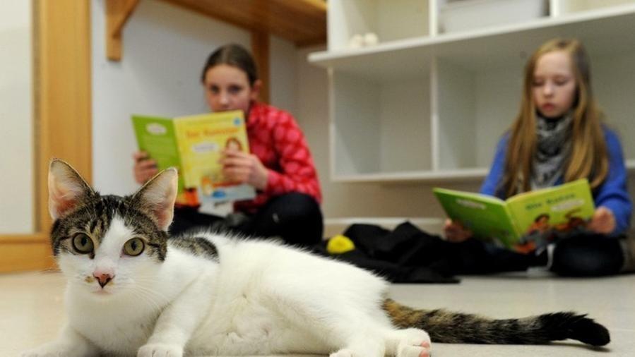 Gatto-con-due-bambine-che-leggono