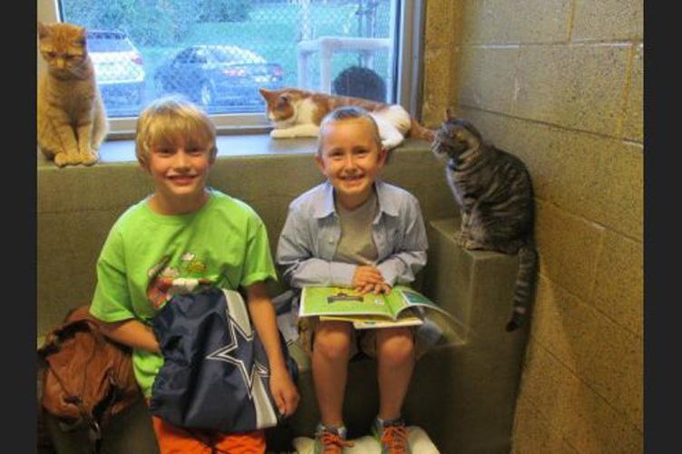 I bambini leggono ai gatti