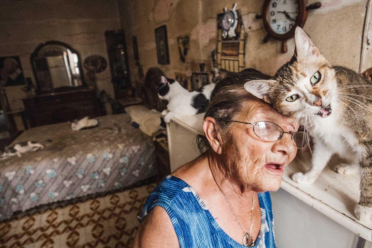 Signora con tanti gatti