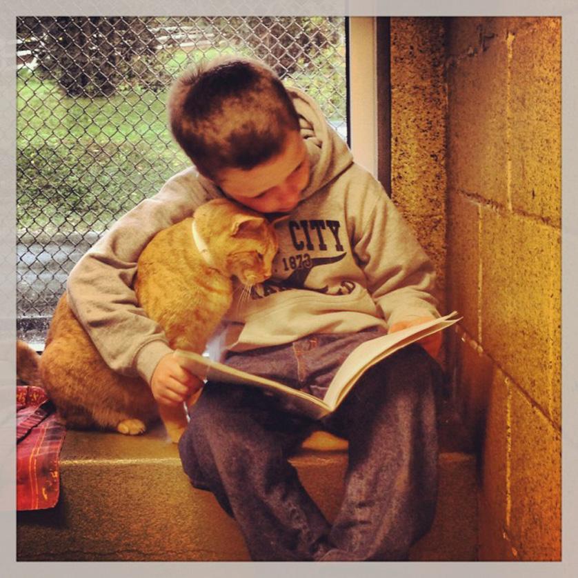 Un bambino che legge ad un gatto