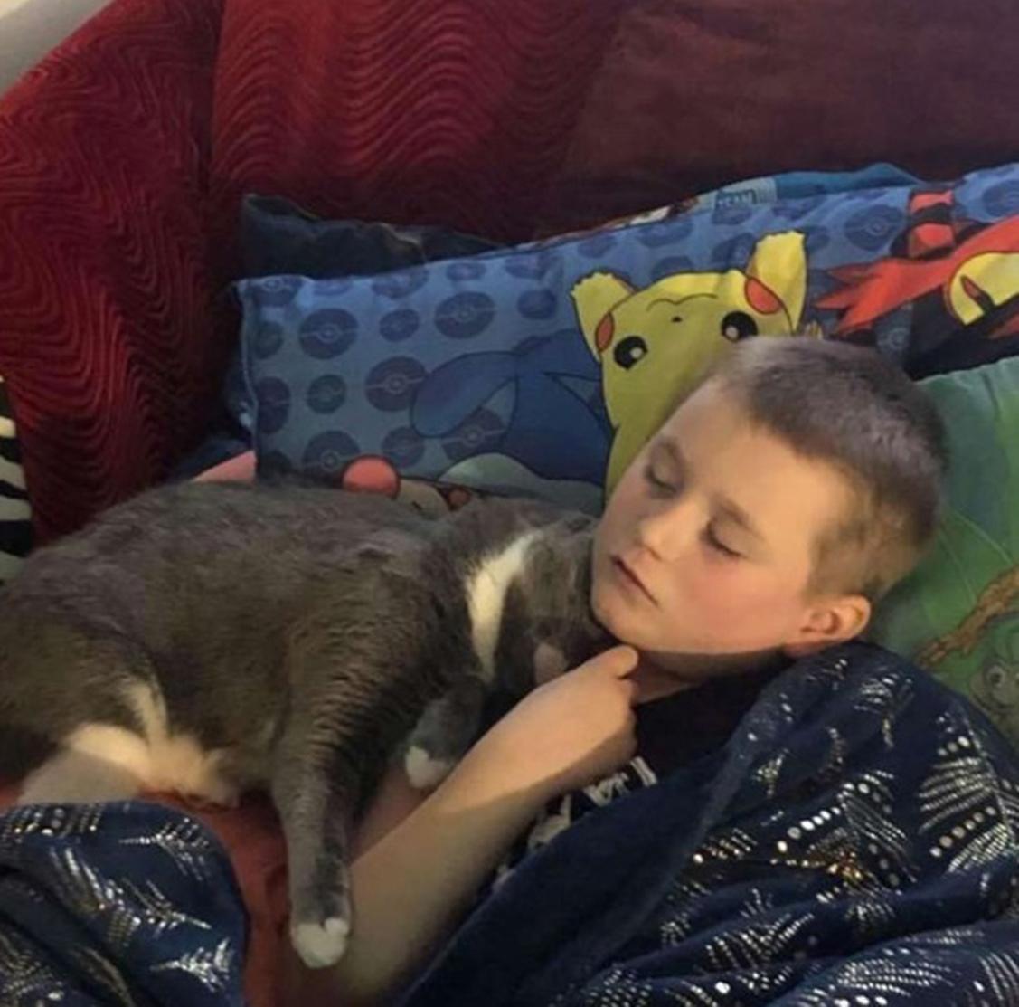 Gatto abbracciato ad un bambino