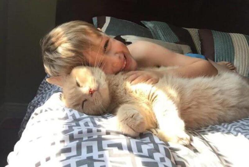 Gatto che dorme con un bambino