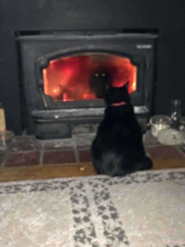 gatto nero davanti al camino