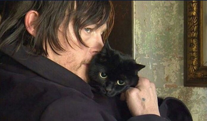 norman reedus con il suo gatto