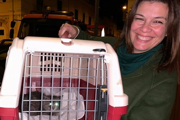 gatto incastrato e salvato