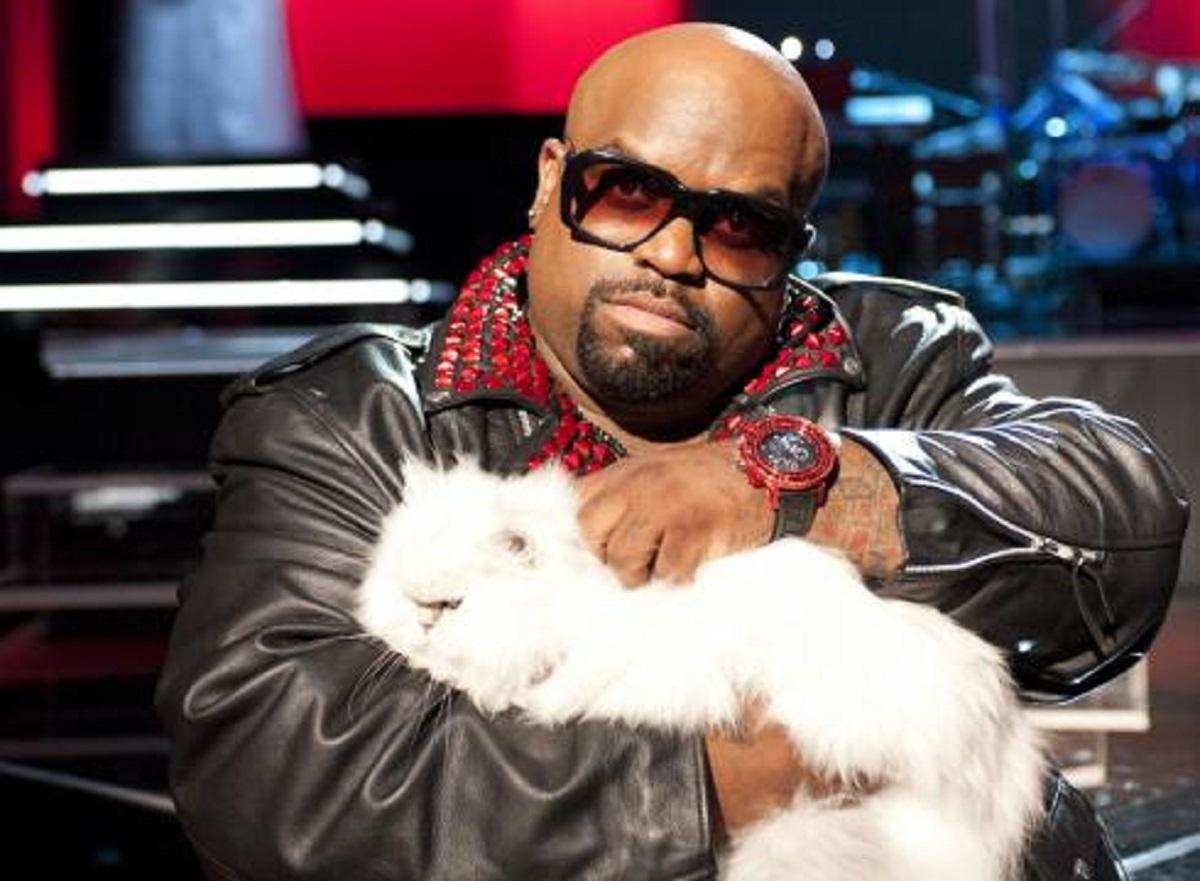 uomo con gatto in braccio
