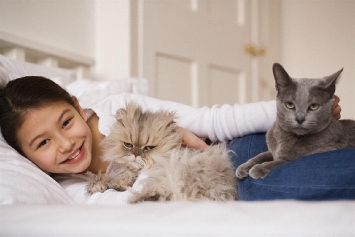 bambina con due gatti sul letto